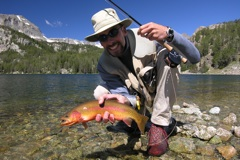 Nice golden trout,eh?