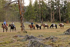 Wind River Mountains, real cowboys.